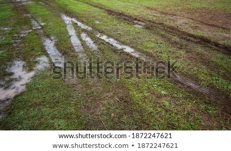Band pad veld groene auto Stockfoto © meinzahn