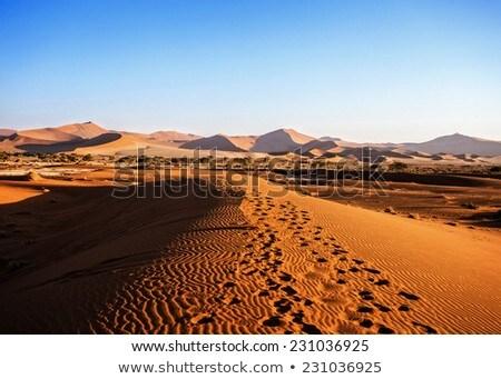 Beautiful Landscape Of Hidden Vlei In Namib Desert Zdjęcia stock © Artush