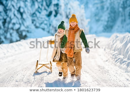 Ninos diversión invierno paisaje nieve ninos Foto stock © meinzahn