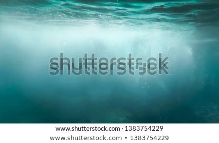 underwater bubbles floating background with sun rays Stock photo © SArts