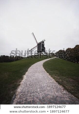 Młyn wiatrak wygaśnięcia Belgia charakter vintage Zdjęcia stock © dmitry_rukhlenko