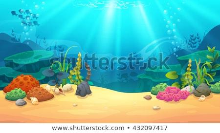水生の · 抽象的な · 実例 · 背景 · フレーム · スペース - ストックフォト © freesoulproduction