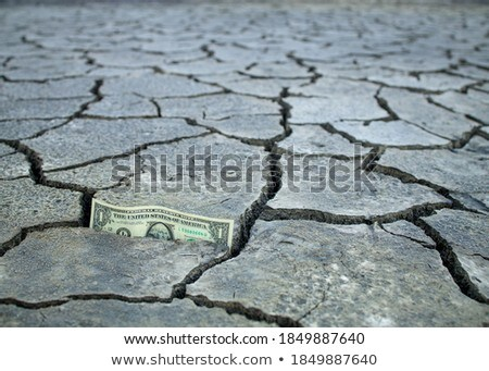dollar with earth cracked Stock photo © get4net