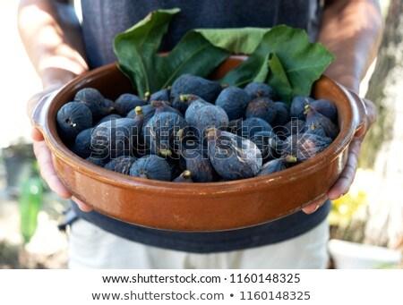 ripe figs in a rustic earthenware bowl Stock photo © nito