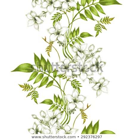 Seamless background design with jasmine flowers Stock photo © colematt