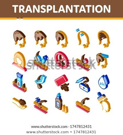 Hair Transplantation Isometric Icons Set Vector Stock photo © pikepicture