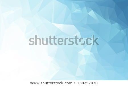 Baixo estilo geométrico branco cartão de visita projeto Foto stock © SArts