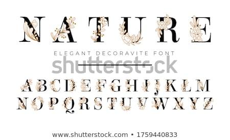 Floral Alphabet Font Stock photo © kostins