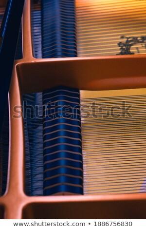 arany · font · szimbólum · kötél · üzlet · pénz - stock fotó © prill