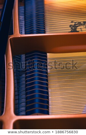 golden chord detail Stock photo © prill