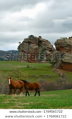 Mallos de Riglos icon shape mountains in Huesca Stock photo © lunamarina