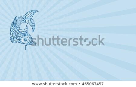 business card koi nishikigoi carp fish diving down drawing stock photo © patrimonio