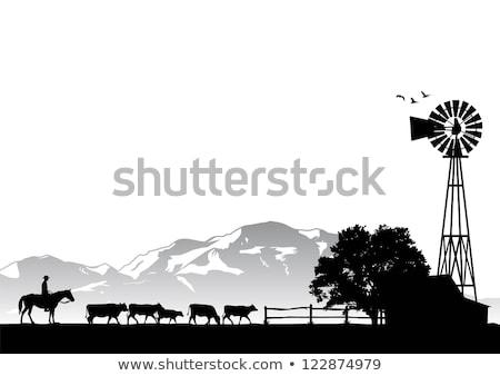 dieren · boerderij · scène · illustratie · hemel · water - stockfoto © makyzz