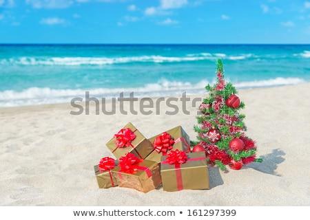 Stockfoto: Christmas · zandstrand · nieuwjaar · viering · water