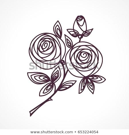 花束 定型化された バラ 手 図面 現在 ストックフォト © ESSL