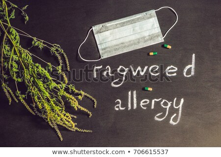 Ambrosia, medical mask, allergy tablets. Allergy to ambrosia concept. Stock photo © galitskaya