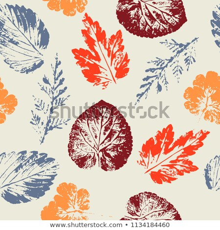 Hallo Herbst Set gelb orange Bäume Stock foto © robuart