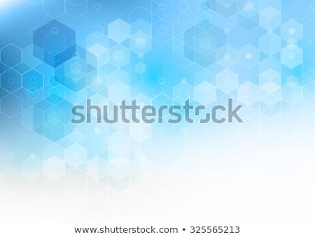 белый синий шестиугольник линия шаблон интернет Сток-фото © SArts