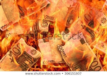 Euro Burning Cash Note Stock photo © albund