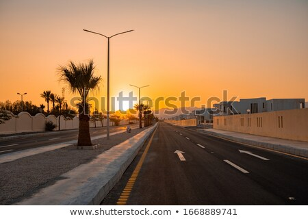 Sunset over a deserted highway with white road markings Stock photo © ElenaBatkova