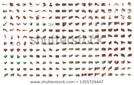 ビッグ コレクション ベクトル フラグ モルディブ 世界 ストックフォト © butenkow