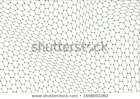 Colorful chemical structure with atomic bonds in hexagon shape on white Stock photo © evgeny89