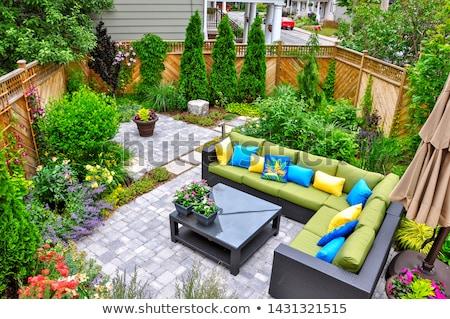 Piękna zielone ogród kwiaty luksusowe podwórko Zdjęcia stock © Anneleven