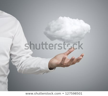 Businessman in cloud stock photo © leeser