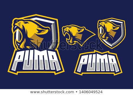 panther mascot head vector graphic stock photo © chromaco