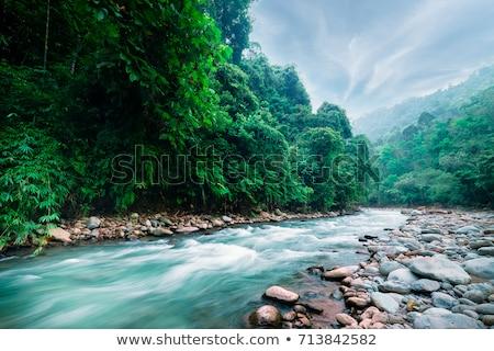 espetacular · cair · rio · corrida · colorido - foto stock © photocreo