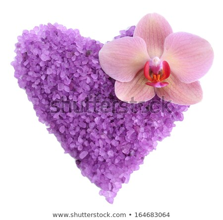 heart from pink orchids isolated on white stock photo © artjazz