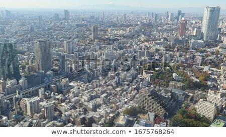 Tokio · skyline · stad · ontwerp · brug · zwarte - stockfoto © 3523studio