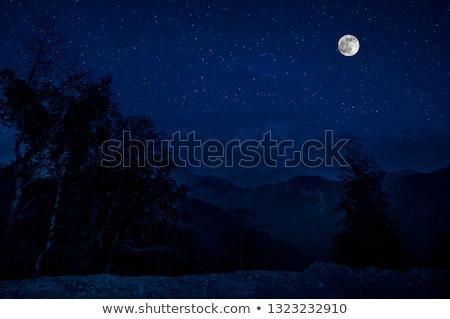 verde · luna · cielo · hierba · verde · árboles · nubes - foto stock © WaD