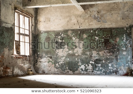 abandoned house wall with messy graffiti Stock photo © sirylok