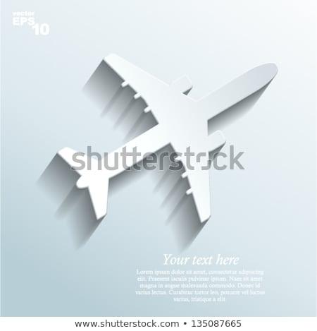 Single large aircraft silhouette stock photo © lkeskinen