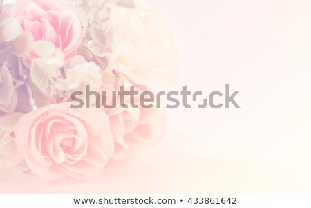 velho · marrom · damasco · papel · pergaminho - foto stock © gregory21