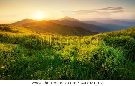 mountain landscape at sunset time stock photo © kawing921