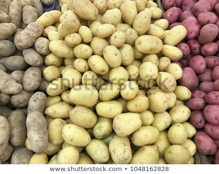 Raw Potato Full body and Slices Stock photo © zhekos