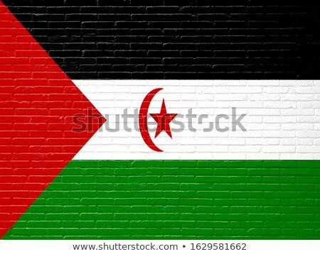 bandera · occidental · sáhara · pared · de · ladrillo · pintado · grunge - foto stock © creisinger