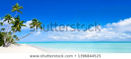 Images of an island paradise Stock photo © photography33