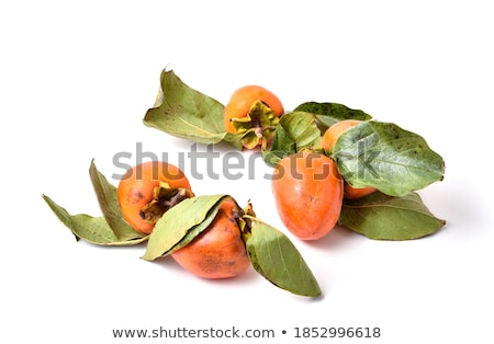 Pomarańczowy dojrzały persimmon odizolowany biały żywności Zdjęcia stock © homydesign