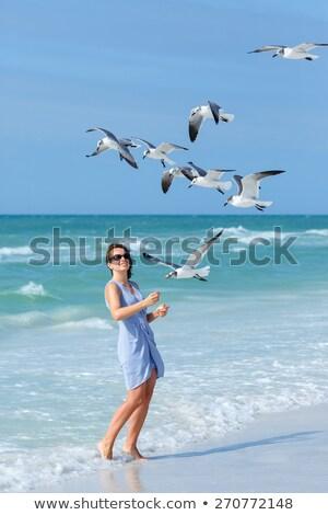 Fiatal lány tengerpart etetés sirályok égbolt víz Stock fotó © mikecharles