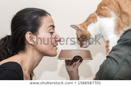 Stock photo: Woman feeding hungry pet cat