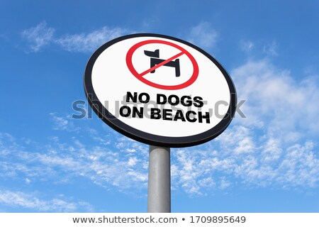 no pets on the beach sign stock photo © donland