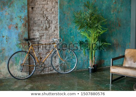 Aged vintage black bicycle, big wooden door, black and white Stock photo © lunamarina