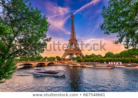 Eiffel tower and river Seine in Paris, France Stock photo © aladin66