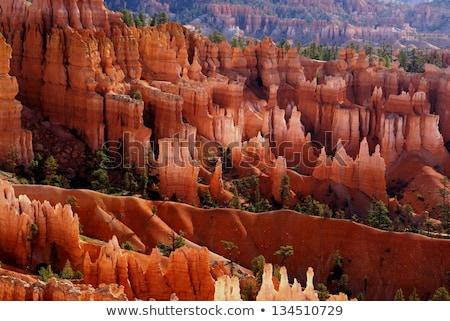 Ridges at Bryce National Park in Utah Stock photo © Hofmeester