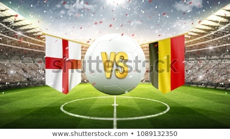 Soccer ball with Belgium flag on pitch Stock photo © stevanovicigor