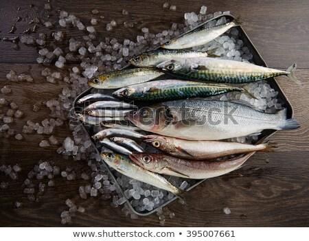 domates · beyaz · plaka · balık · yağ · yağ - stok fotoğraf © marimorena