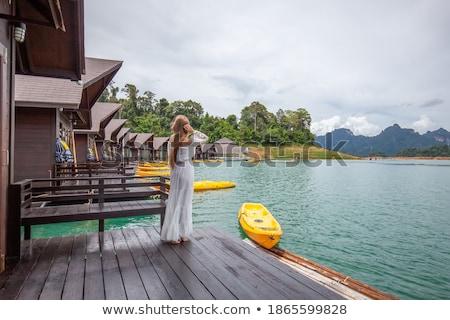 Bungaló trópusi tó fából készült part LAN Stock fotó © smithore